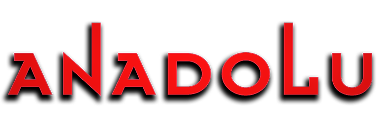 Anadolu Pembe Logo Konyada